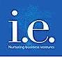 IndigoEdge's Company logo