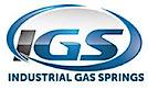 Industrial Gas Springs's Company logo