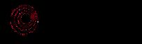 Initiate Sports International's Company logo