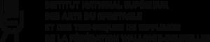 Insas's Company logo