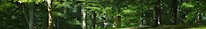 Insekten Kaufen's Company logo