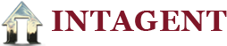 Intagent's Company logo