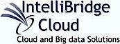 Intellibridge Cloud's Company logo