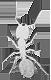 Intenzibne's Company logo