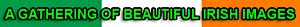 Irelandsgathering's Company logo