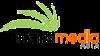 Island Media Asia's Company logo