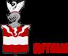 Isom Software's Company logo