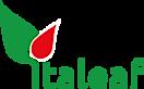 Italeaf S's Company logo