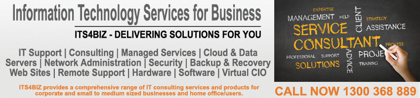 Its4biz - Information Technology Services For Business Logo