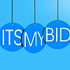 Itsmybid.in's Company logo