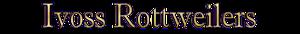 Ivoss Rottweilers's Company logo