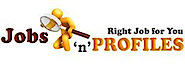 Jobs N Profiles's Company logo
