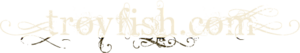 Troyfish's Company logo