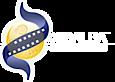 Xibalbaproducciones's Company logo