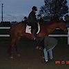 Journey's End Farm Sport Horse Evaluations's Company logo