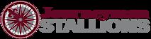 Journeymanstallions's Company logo