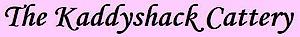Kaddyshack Cattery's Company logo