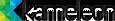 Temnos's Competitor - Kameleon logo