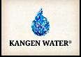Kangen Purity's Company logo