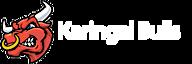 Karingal Football And Netball Club's Company logo