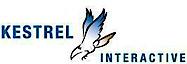 Kestrel Interactive's Company logo