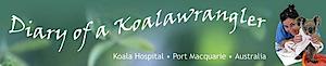 Koala Hospital Port Macquarie's Company logo