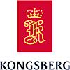 Kongsberg Aviation Maintenance Services's Company logo