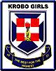 Krobo Girls' Presbyterian Senior High School's Company logo