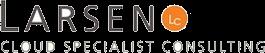 Larsen Consulting Sl's Company logo