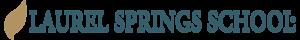 Laurelsprings's Company logo