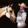 Legacy Performance Horses's Company logo