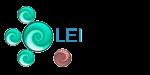 Leiready's Company logo