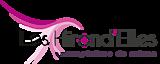 Les Hirond'elles's Company logo