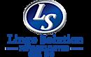 Lingo Solution's Company logo