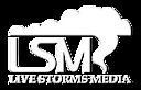 Livestormsmedia's Company logo
