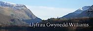 Llyfrau Gwynedd Williams's Company logo