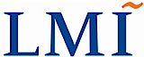 LMI Government Consulting's Company logo