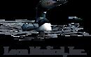 Loon Medical's Company logo