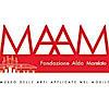 Maam - Museo Delle Arti Applicate Nel Mobile, Villa Dionisi's Company logo