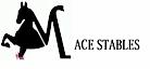 Mace Stables's Company logo