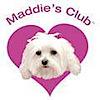 Maddiescorner's Company logo