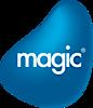 Magic Software's Company logo