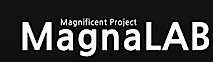 Magna Lab's Company logo