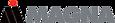 Hanon Systems's Competitor - Magna logo