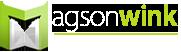 Magsonwink's Company logo