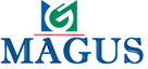 Magusitservices's Company logo