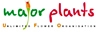 Easymoss's Competitor - MajorPlants logo