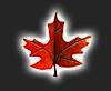 Maple Textile Mills's Company logo