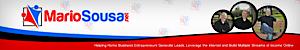 Mario Sousa's Company logo