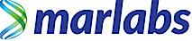 Marlabs's Company logo